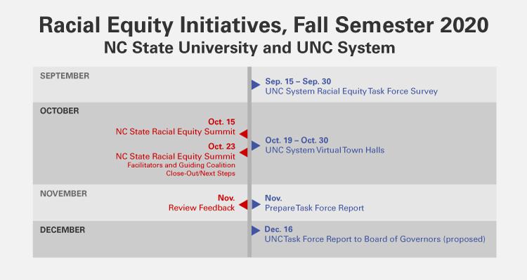 Racial Equity Initiatives, Fall Semester 2020