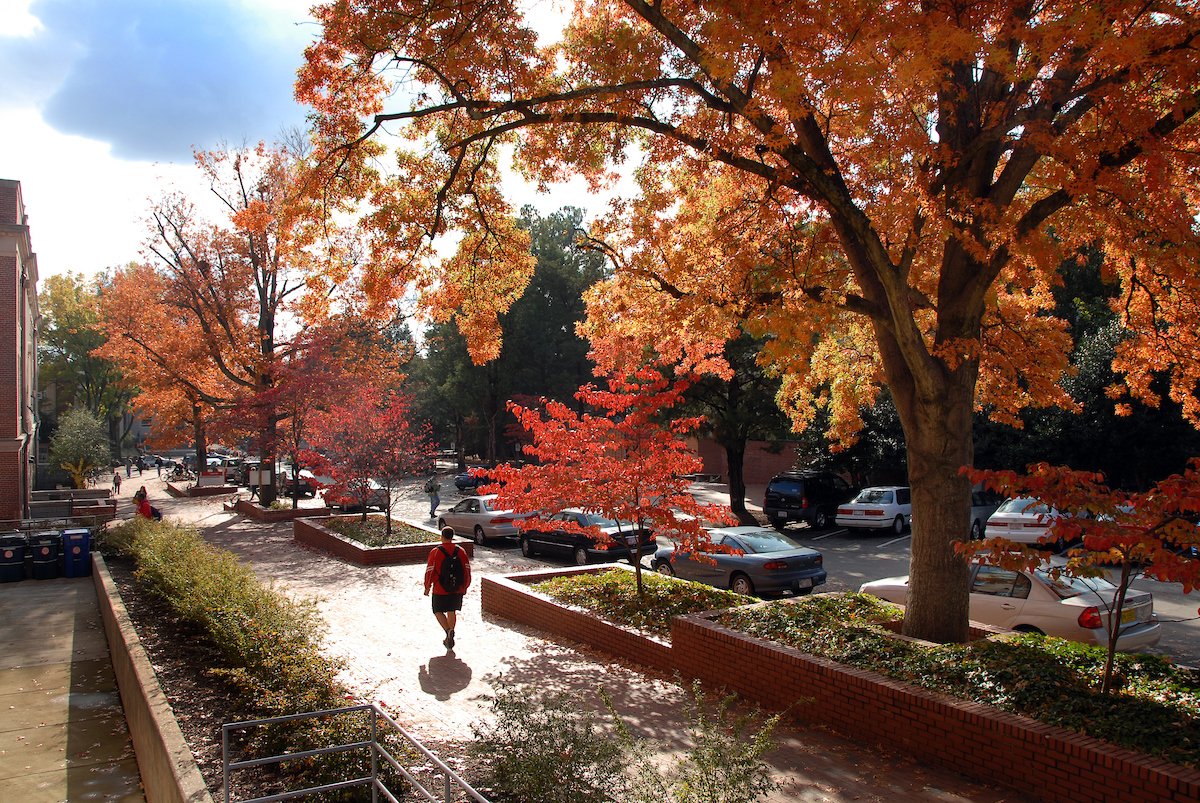 Campus in fall with foliage