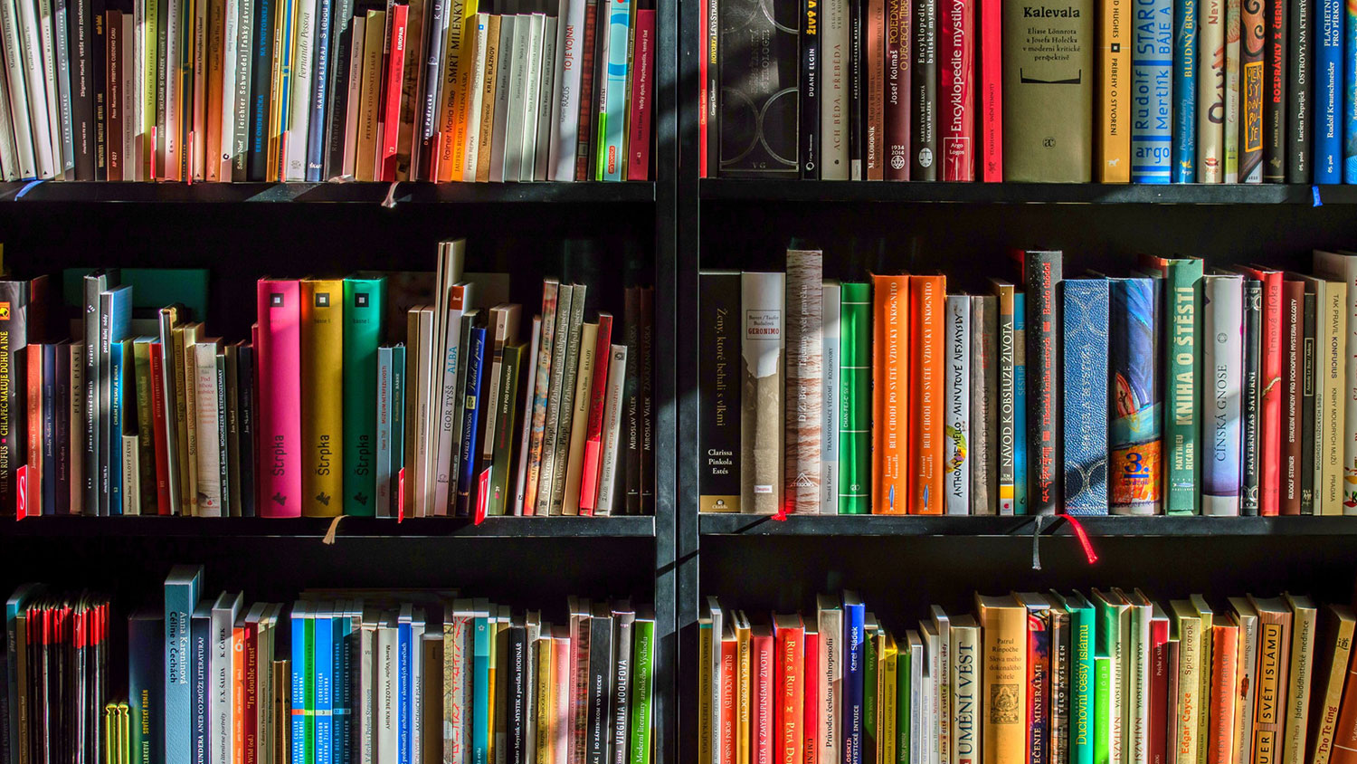 Colorful books on a shelf