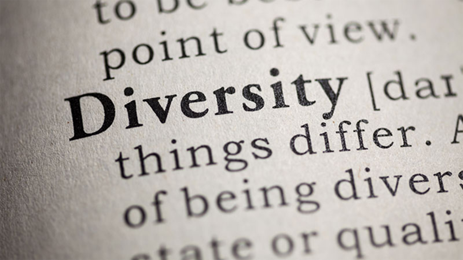 Diversity in the dictionary
