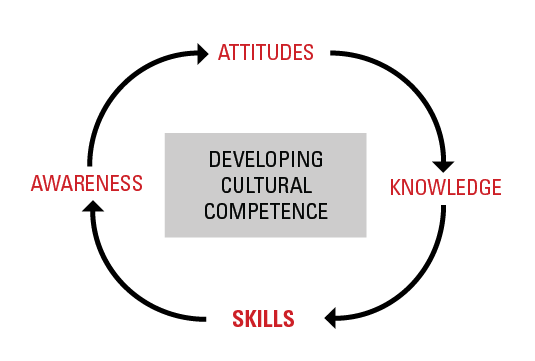 Developing Cultural Competence - Skills