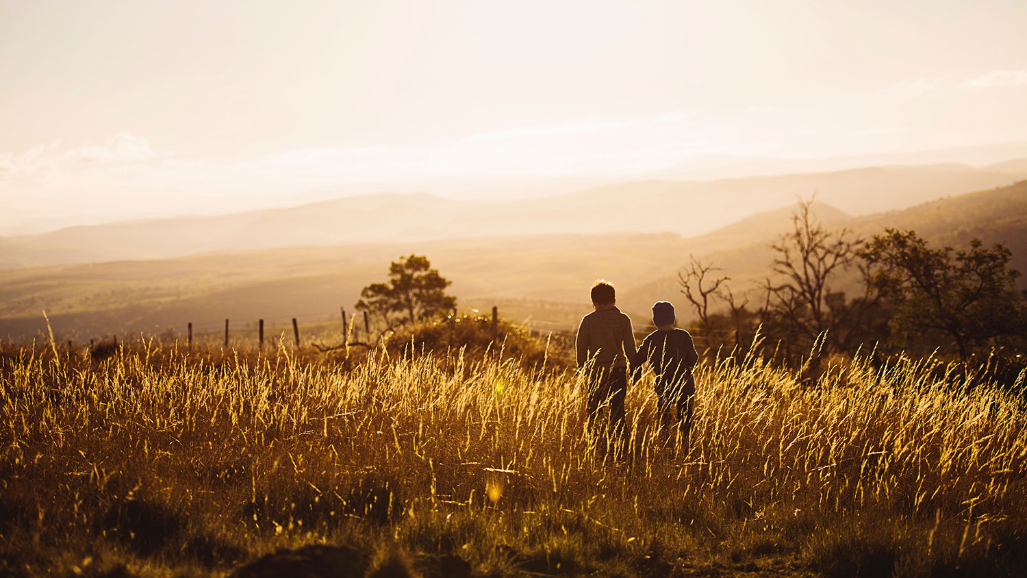 Two children walking in a field at dusk